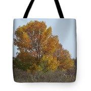 Golden Tree II Tote Bag