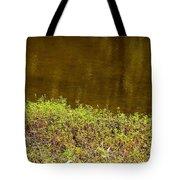 Golden Water's Edge Tote Bag