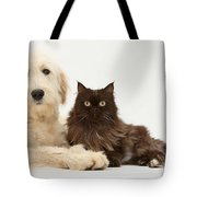 Goldendoodle And Chocolate Cat Tote Bag