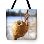 Goldenrod Gall Hole Tote Bag