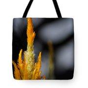 Goldenrod Tote Bag