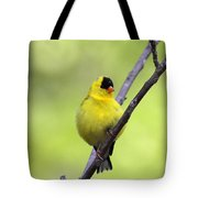 Goldfinch - All Puffed Up Tote Bag