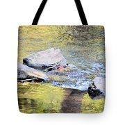 Goldwater Tote Bag