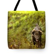 Gonna Get You Tote Bag