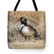 Goose Exercises  Tote Bag