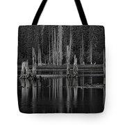 Goose Lake Dusk Tote Bag