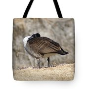 Goose Rubbing Its Back Tote Bag