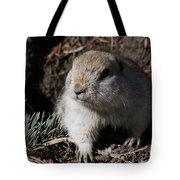Gopher Tote Bag