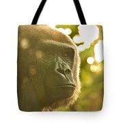 Gorilla At Dusk Tote Bag