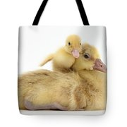 Gosling And Duckling Tote Bag