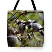Gossip Birds Tote Bag
