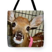 Got Food Tote Bag