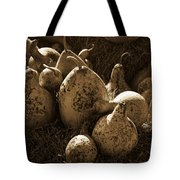 Gourds In Sepia Tote Bag