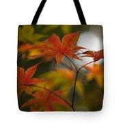Graceful Layers Tote Bag