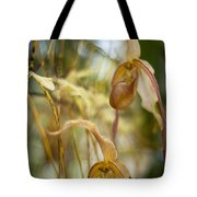 Graceful Orchids Tote Bag