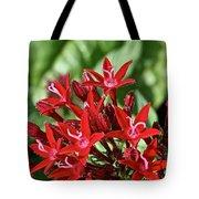 Graffiti Red Lace Tote Bag