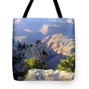 Grand Canyon 18 Tote Bag