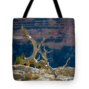 Grand Canyon Dead Tree Tote Bag