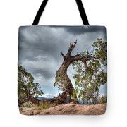 Grand Canyon Facing The Storm Tote Bag