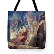 Grand Canyon Roxie Roller Tote Bag