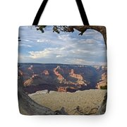 Grand Canyon Tree Tote Bag