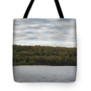 Grand Island E Channel Lighthouse 5 Tote Bag
