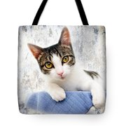 Grand Kitty Cuteness 2 Tote Bag