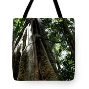 Grand Old Lady Tote Bag