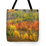 Grand Teton Fall Color Tote Bag