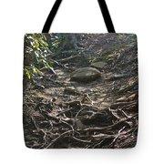 Grandfather's Trail Tote Bag