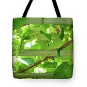 Grape Arbor Tote Bag