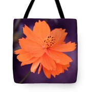Grape Creamsicle Tote Bag