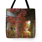 Grape Leaves On Columns Tote Bag