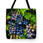 Grapes Ready For Harves Tote Bag
