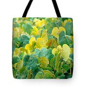 Grapevines In Azores Islands Tote Bag
