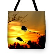 Grasping The Sunset Tote Bag