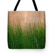 Grass And Stucco Tote Bag