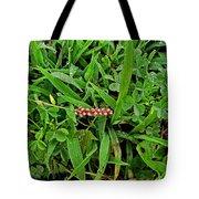 Grass Drops II Tote Bag
