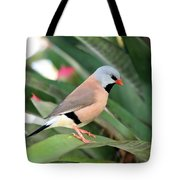Grass Finch Tote Bag