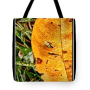 Grass Grows Through The Leaf Window Tote Bag