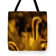 Grass In Golden Light Tote Bag