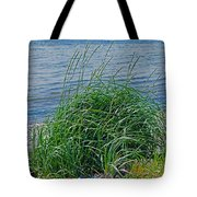 Grass On The Beach Tote Bag