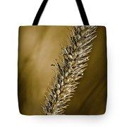 Grass Seedhead Tote Bag