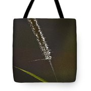 Grass Spikelet Tote Bag by Heiko Koehrer-Wagner