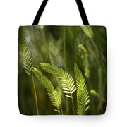 Grass Stems And Seed No.2129 Tote Bag