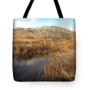 Grass Swamp And Snow Tote Bag