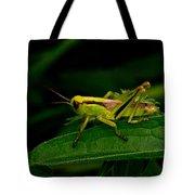 Grasshopper 1 Tote Bag