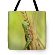 Grasshopper In Green Tote Bag