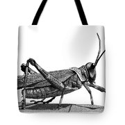 Grasshopper Tote Bag