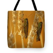 Grasshoppers On Wheat, Treherne Tote Bag